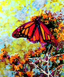 Image of a monarch butterfly, from the cover of The Conservationist.